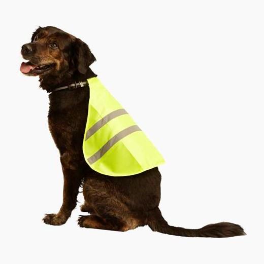 Fräscha Hundtillbehör - allt du behöver till hunden - Biltema.se GW-32